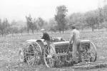 Agricoltura: la Cia compie 40 anni, ora la sfida è digitale