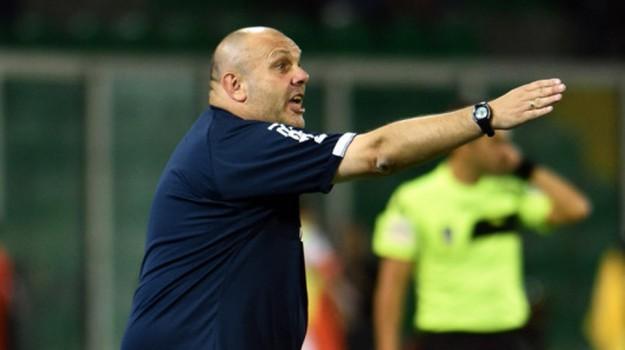 calcio serie b, Palermo Ascoli, palermo calcio, Bruno Tedino, Igor Budan, Palermo, Qui Palermo