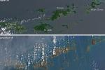 L'uragano Irma spegne il verde delle isole Vergini