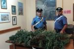 Droga: nell'auto quasi 10 kg marijuana, arrestato a Siracusa