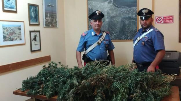 carcere Cavadonna, marijuana, polizia siracusa, Corrado Cassalini, Siracusa, Cronaca