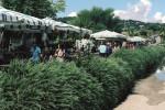 Il mercatino di Caltanissetta si sposta in via Ferdinando II