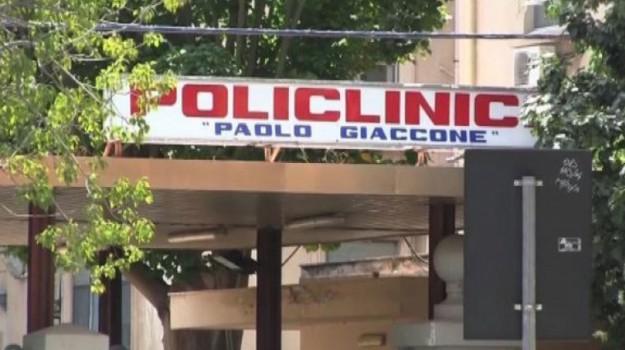 colangite biliare, fegato, POLICLINICO, Palermo, Società