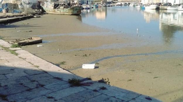 progetto dragaggio porto mazara, Trapani, Politica