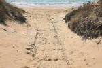 Rubati gli scivoli per gli accessi in mare dei disabili a Tre Fontane