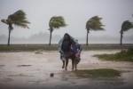 """Florida, 6 milioni in fuga da Irma: """"All'uragano non si sopravvive"""""""