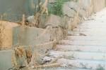 Agrigento, la via San Vito invasa da topi e rifiuti