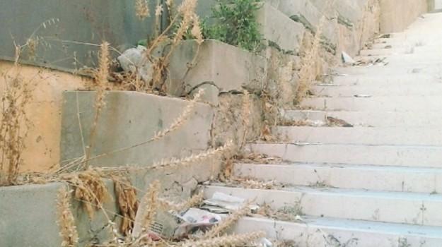 Topi e rifiuti ad Agrigento, Agrigento, Cronaca