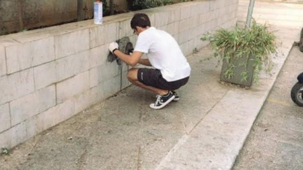 scritte muri castelvetrano, volontari castelvetrano, Trapani, Cronaca