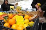 Arancia rossa, in Sicilia migliore raccolta ultimi 10 anni