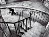 Cartier-Bresson, mi sento palermitano