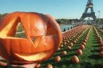 Halloween: Coldiretti, vola l'export di zucche (+16%)