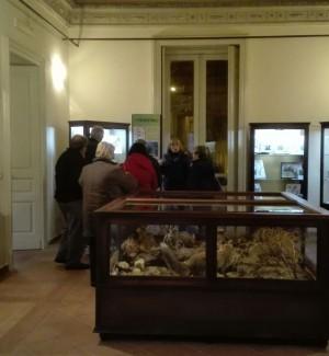 Agira, oltre 150 visitatori al Museo per la Sagra della Cassatella