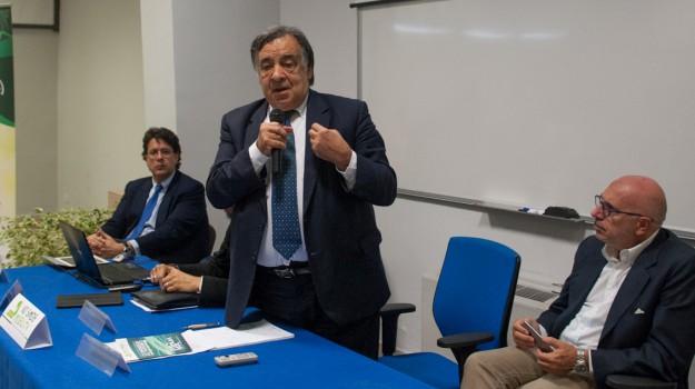 no smog mobility, Palermo, Economia