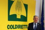 Coldiretti Enna, Elio Savoca eletto presidente