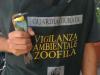 Due volatili salvati dalle guardie giurate del Wwf a Caltanissetta