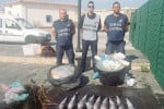Milazzo, sequestrati 15 chili di pesce avariato