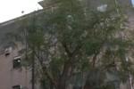 Palermo, manca il reparto otorinolaringolatria all'ospedale dei Bambini: disagi