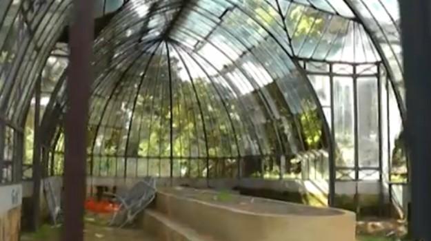 Vandali e incuria al Giardino Inglese di Palermo, lo stato della serra