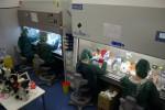Al Policlinico di Palermo inaugurato il nuovo centro di Oncogenomica