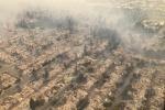 Il fuoco attacca la tenuta di Antinori a Napa Valley