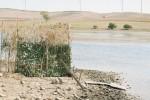 Salvare la diga Zaffarana a Trapani, appello di 16 associazioni