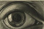 A Pisa una selezione di oltre 100 opere di Escher