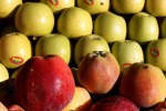 Fiere: a Macfrut 2018, il 'Tropical Fruit Congress'