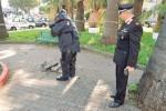 L'allarme bomba a Messina, ma è una valigia abbandonata