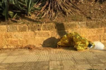 Perde il controllo della moto e cade, morto un 17enne ad Agrigento: seconda giovane vittima in poche ore