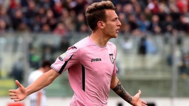 Frosinone-Palermo serie B, Nino La Gumina, Palermo, Qui Palermo