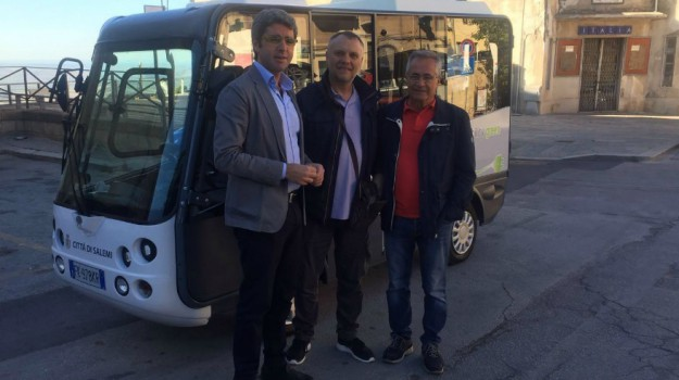 bus ecologico salemi, Trapani, Economia