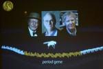 Nobel per la Medicina a Hall, Rosbash e Young: hanno scoperto come funzionano i ritmi biologici