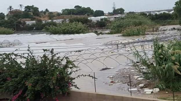Bomba d'acqua nel Ragusano, Coldiretti: grossi danni alle coltivazioni - Video