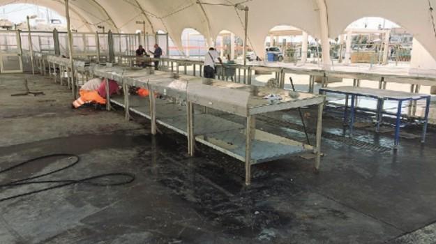 mercato ittico trapani, Trapani, Cronaca