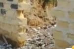 Rifiuti in via Terra delle Mosche, migranti e cittadini insieme per ripulirla
