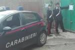 Corse clandestine di cavalli a Messina, arrestato un veterinario di Palermo