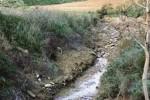 Inquinamento alla discarica di Stretto a Caltanissetta, Comune parte civile