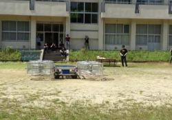 Durante il primo test aperto al pubblico, la macchina-drone si è alzata di qualche metro per poi tornare a terra. L'obiettivo è metterla sul mercato per Tokyo 2020