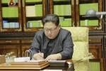 Kim Jong-un, Corea del Nord