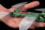 La libellula tech: il suo volo una perfetta danza di aerodinamica