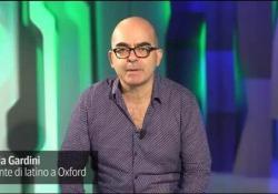 Il commento del professore di Oxford Nicola Gardini