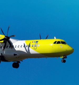 Api nei tubi degli aerei, disagi e ritardi sulla tratta Palermo-Pantelleria