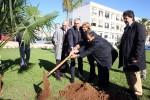 """Bosco """"No Smog Mobility"""", 30 nuovi alberi a Palermo - Video"""