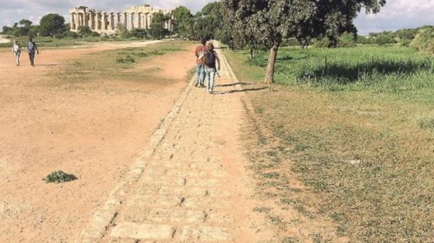 parco archeologico selinunte, Trapani, Economia