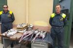 Pesce senza certificato, sequestrati a Palermo oltre 100 chili di prodotti ittici