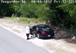 Uomo abbandona cane, beccato dalle telecamere e arrestato