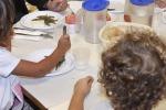 Nasce certificazione mense biologiche nelle scuole italiane