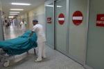 Ddl Lorenzin, nascono gli ordini degli infermieri. Norme su esperimenti e lotta ad abusivi