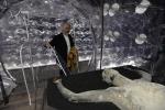 'Viva arte viva' la mostra più vista del 2017